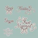 Wedding collection. Bride Groom Invitation Stock Photography