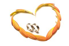 Wedding concept. Flower and rings Stock Image