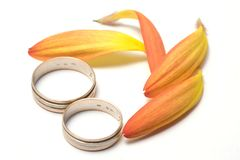 Wedding concept. Flower and rings Stock Photo