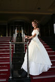 Wedding concept bride in dress Royalty Free Stock Images
