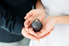 Wedding concept. Bride and groom holding rings in hands. Wedding concept. Bride and groom holding wedding rings in hands on figs. Horizontal photo Royalty Free Stock Photography