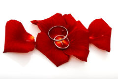 Wedding concept for invitation card. wedding rings in petals of Stock Photo