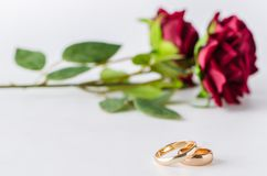 The wedding concept with rings and roses Stock Photo