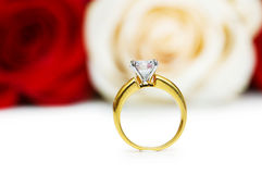 Wedding concept with roses and  rings Stock Photography