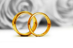 Wedding concept - roses and rings Royalty Free Stock Photos