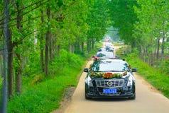 Wedding convoy Royalty Free Stock Photo