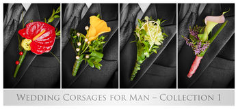 Wedding corsages for man. – collection 1 Royalty Free Stock Image