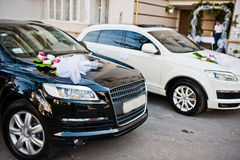 Wedding cortege of black and white cars Stock Images