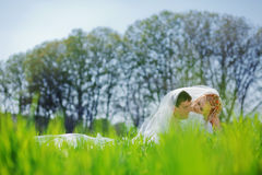 Wedding couple Royalty Free Stock Photos