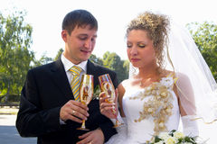 Wedding couple. Young happy wedding couple with champagne glasses Royalty Free Stock Photography