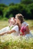 Wedding couple Stock Images