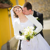 Wedding couple Stock Photography