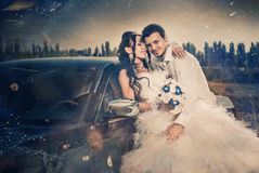 Wedding couple Stock Images
