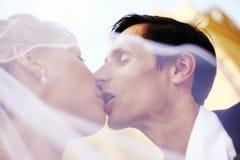 Wedding couple Stock Photography