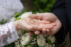 Wedding couple. A wedding couple hands in a park Stock Photography