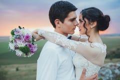 Free Wedding Couple Royalty Free Stock Photos - 72010988