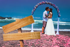 Wedding couple at the beach Royalty Free Stock Photos