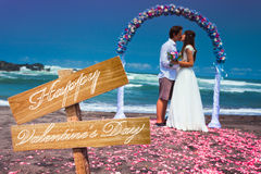 Wedding couple at the beach Stock Images