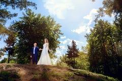 Wedding couple. Beautiful bride and groom. royalty free stock photo