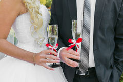 Wedding couple. The bride and groom Royalty Free Stock Photos