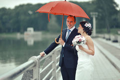 Wedding couple. Bride and groom Stock Images