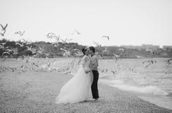 Wedding couple, bride and groom, walking on a. Wedding couple walking on a beautiful beach Stock Image