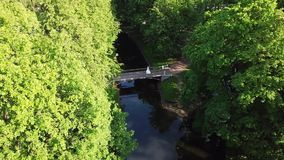 Wedding couple on a bridge in park. Aerial stock video