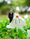 Wedding couple doll on ground field Royalty Free Stock Images
