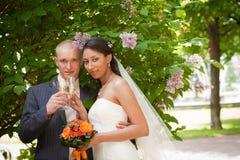 Wedding couple drinking champagne Royalty Free Stock Image