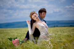 Wedding couple in eared field Stock Photography