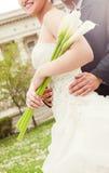 Wedding couple embracing Stock Photography