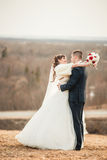 Wedding  couple embracing on open spaces of hills Stock Photos