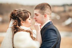 Wedding  couple embracing on open spaces of hills Royalty Free Stock Images