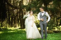 A wedding couple enjoys walking in the woods. Newlyweds hug and hold hands stock image