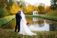 Wedding couple in fall Royalty Free Stock Photos