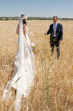 Wedding couple in the field Stock Image