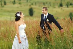 Wedding couple in field Stock Images
