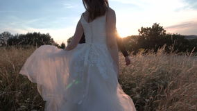 Wedding couple in the field stock video footage
