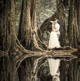 Wedding couple in forest Royalty Free Stock Photo