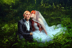 Wedding couple on grass Royalty Free Stock Image