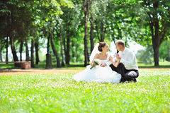 Wedding couple in a grass Stock Images