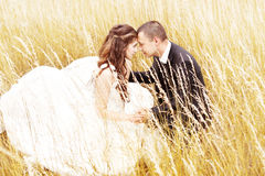 Wedding couple in grass. Bride and groom outdoors royalty free stock photo