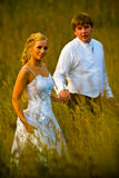 Wedding couple in grassy field. Wedding couple walking in golden grassy field Royalty Free Stock Image