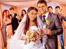 Wedding couple and guests drinking champagne Royalty Free Stock Images