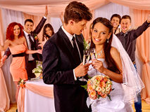 Wedding couple and guests drinking champagne royalty free stock photos