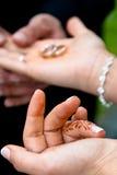Wedding couple handover wedding rings. Turkish couple on their wedding day Stock Photography