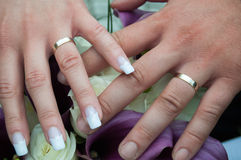 Wedding couple hands with rings Royalty Free Stock Images