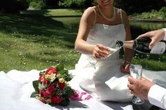 Wedding couple having champangne Stock Photos