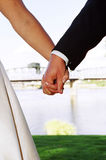 Wedding couple holding hands stock photography