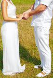Wedding couple holding hands. Bride and groom holding hands Stock Photo